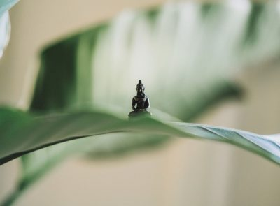 Ma Pause Détox - Yoga